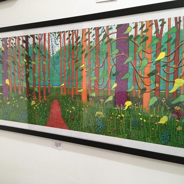 Gallery-Forty Nine - David Hockney's 'Arrival of Spring'